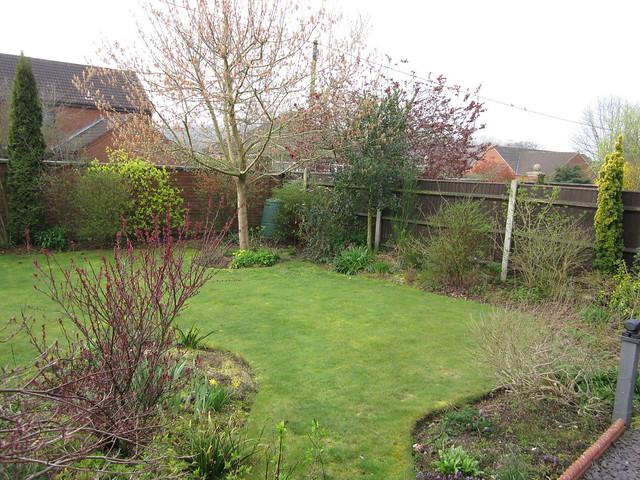 spring garden March 3oth 2014 (2)