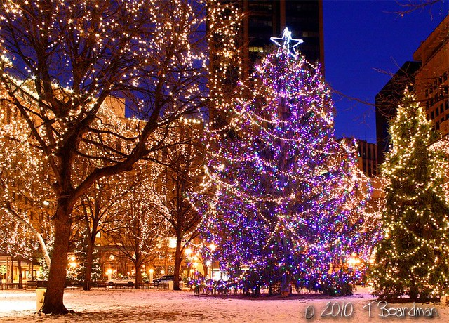 Twin Cities Holiday Lights 2015 - Greenlaw Realty