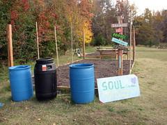 Soul Garden Walnut Creek Lake Raleigh NC 0505