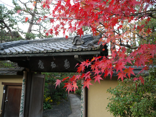 Photo:20101204kyoto051 By detsugu