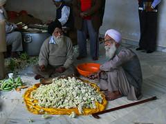 delhi 047