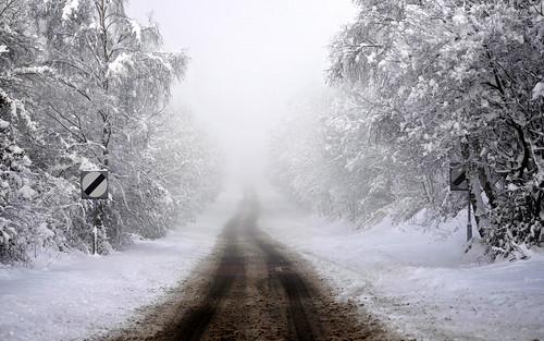 Merthyr Road In Mist