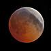 eclipse ingress by p.l.dove