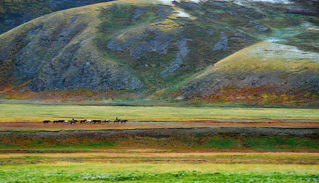 Nomads at the Tibetan Plateau.
