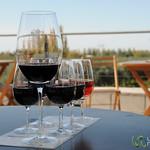 Tasting Flight at Tempus Alba Winery - Mendoza, Argentina