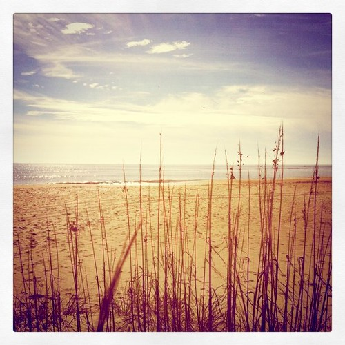 christmas xmas beach grass square nc sand squareformat thepoint iphone soutport iphoneography instagram instagramapp uploaded:by=instagram foursquare:venue=8331518