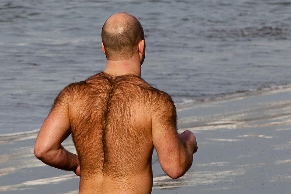 Hairy italian