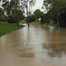 20110111 Brisbane Floods Day 1