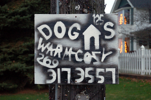 Amazing Homemade Sign: Dog Houses