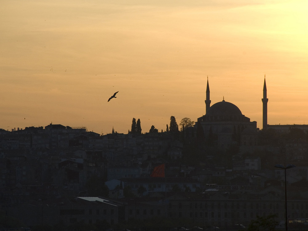 Istanbul - Sultan Selim Cami by Alessandro Giannini