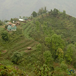 Terraced Fields and Village - Sikkim