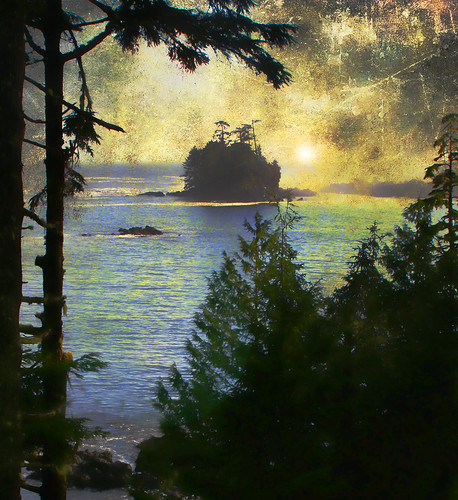 ocean trees sunset canada texture water photoshop islands coast pacific britishcolumbia vancouverisland coastal pines coastline ucluelet theview outcroppings texturedlayers saariysqualitypictures magicunicornverybest selectbestexcellence magicunicornmasterpiece sbfmasterpiece jackaloha2 mygearandmepremium