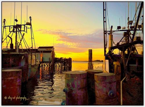sunset ny montauk hcs trawlers flickraward selectbestfavorites heywherestheseagull commercialtrawlers itsneverjustanothersunset