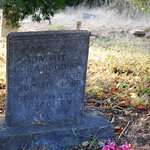 Tommie Cora Brown`s Headstone in Evergreen Cemetery