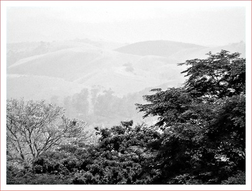 Neblinas ao longe..some fog (Digital)