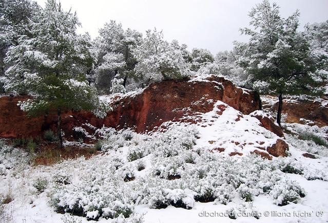 Nevada en Murcia - Diciembre 2009