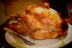 turkey(0.0), fried food(0.0), bird(0.0), meal(1.0), turkey meat(1.0), chicken meat(1.0), roasting(1.0), thanksgiving dinner(1.0), meat(1.0), hendl(1.0), food(1.0), dish(1.0), roast goose(1.0), cuisine(1.0), cooking(1.0), turducken(1.0),