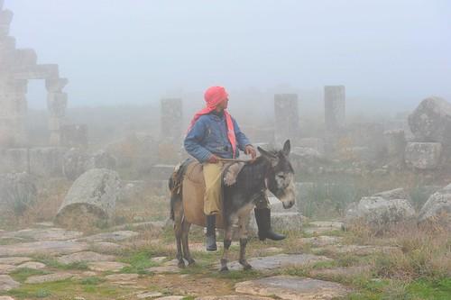 Apamea (Syria)