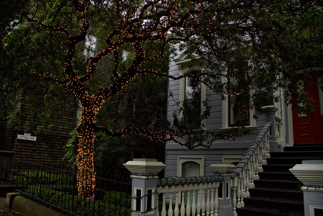 christmas decoration on Bush St; Lower Pacific Heights, San Francisco (2011)