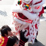 Chinese New Year of Rabbit 2011 030