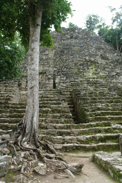 Pirámide de la Iglesia comida por la selva cobá, la apocalíptica ciudad del fin del mundo - 5477291138 929104de2d o - Cobá, la apocalíptica ciudad del fin del mundo