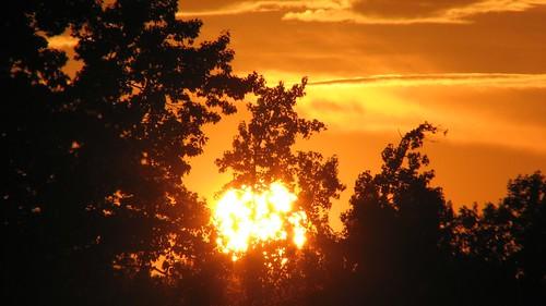 sunset sun charlotte