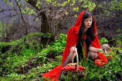 [フリー画像素材] 人物, 女性, コスプレ, 赤ずきん, アメリカ人, 人物 - 森林, ローブ ID:201109152000