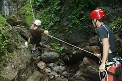 adventure, sports, recreation, outdoor recreation, hiking equipment, abseiling, jungle, climbing,