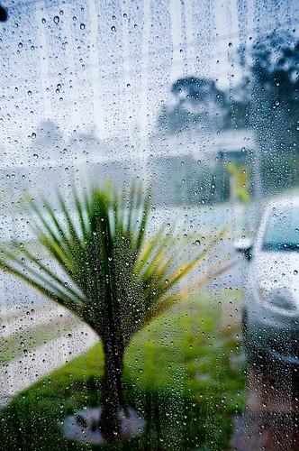 Durante a chuva_1