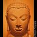 Buddha head, stone, Gupta 5th century AD