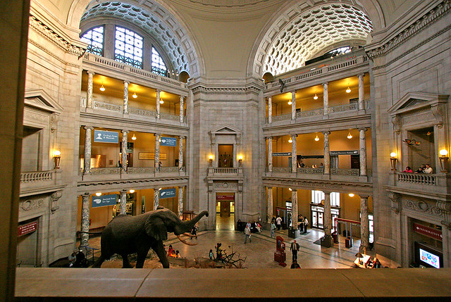 Foyer Museum Zoo : Interior entrance foyer of the smithsonian natural history
