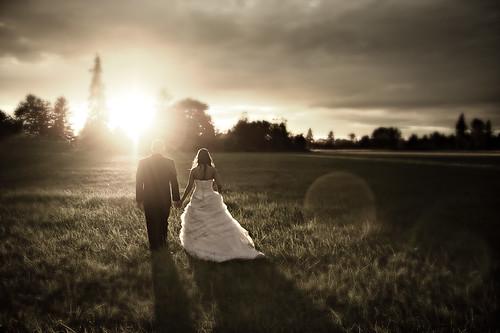 無料写真素材, 人物, カップル, 行事・イベント, 結婚式, 人物  草原, 人物  二人, 人物  後ろ姿, ウエディングドレス