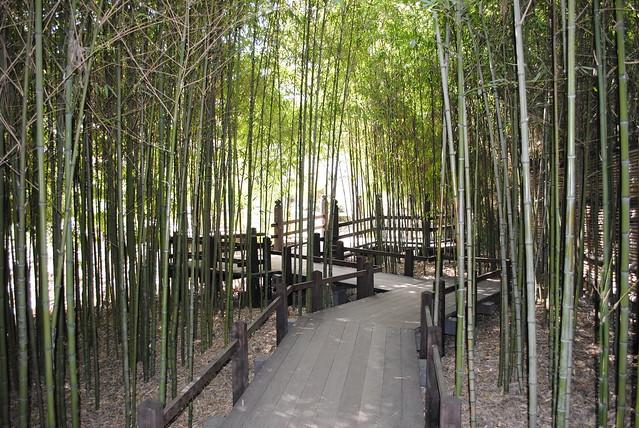 Japanese Garden Huntington Library Botanical Garden Pasadena Ca Flickr Photo Sharing