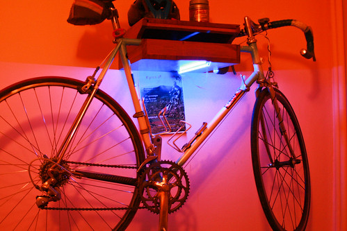 Bikeshelf Blue Lamp