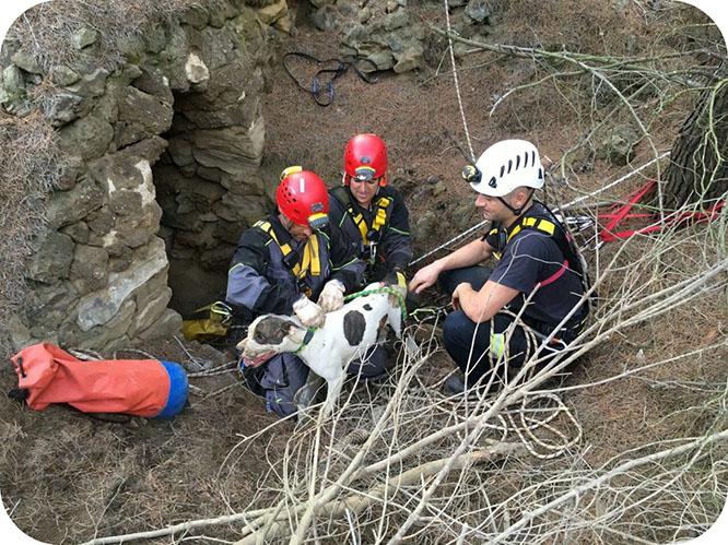 Bomberos rescatan a un perro en una mina de Portmán