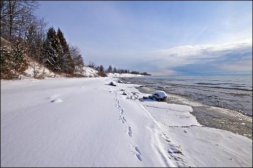 snow ontario water tracks lakeshore lakeontario sundog cobourg lucaspoint
