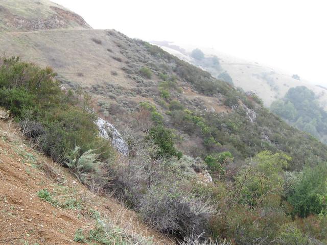 Climbing Black Mountain