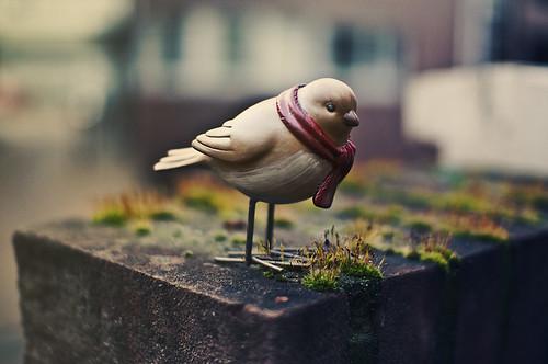 Warm bird