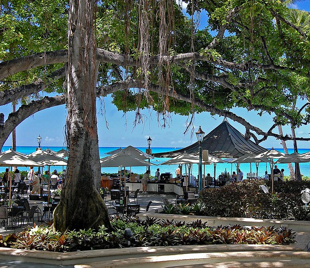 Beach Bar Amp Banyan Tree Moana Surfrider Explore Jcc55883 Flickr Photo Sharing