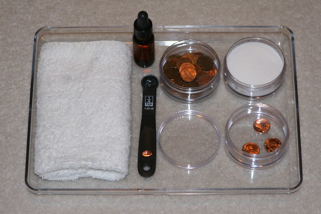 Montessori-Inspired Penny Polishing Science Tray