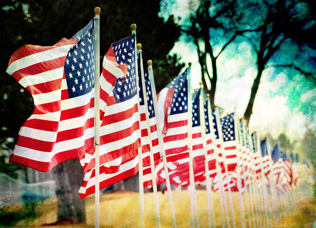 American pictures flags of