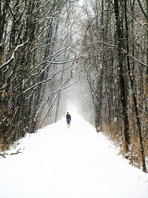 Winter trail from Flickr via Wylio