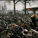 Oh my Gosh, where is my bike ?  Cycle Shed Amsterdam Central Station. by martin alberts Pictures of Amsterdam