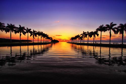 sunrise miami 305 newvision deeringestate shootmiami blinkagain bestofblinkwinners blinkagainsuperstars blinksuperstars peregrino27newvision