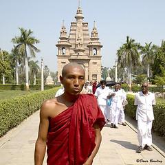 Sarnath, India 2011