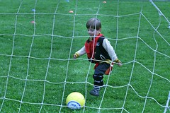 goalkeeper(0.0), player(0.0), football player(1.0), ball(1.0), sport venue(1.0), kick(1.0), sports(1.0), football(1.0), net(1.0), goal(1.0), ball(1.0),