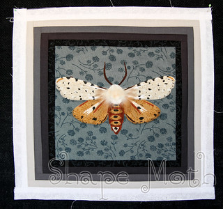 Moth raw edge applique and log cabin block