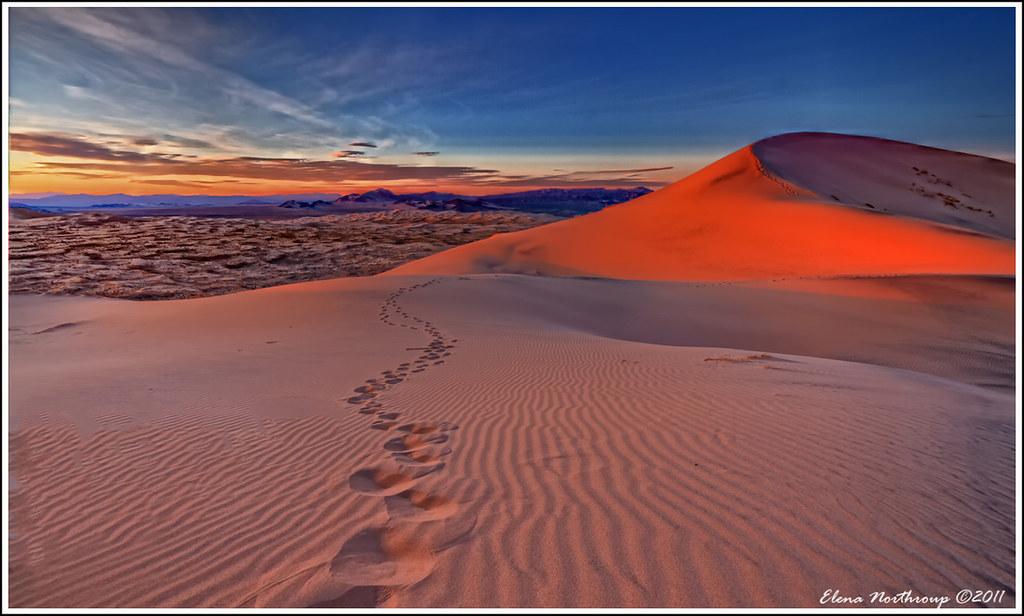 Desert Deluge, Kelso Dunes, Mojave Desert National Preserve