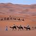 Moroccan traders, Erg Chebbi (Simon Woolley)