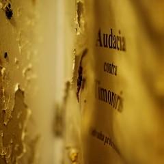 Leafing through the Book I found at a Grave - Zentralfriedhof Wien Simmering, Tor 1, Alte Jüdische Abteilung